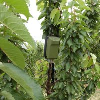 IoT Environment Impact Product Development